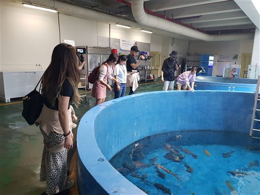 從拍攝開始即引發熱潮的韓國知名天團EXO實境節目《EXO的爬梯子世界旅行第二季》來到臺灣的高雄及墾丁,身為臺灣旅遊指標的國立海洋生物博物館也列入節目療癒系重要景點。EXO在海生館與魚兒近距離接觸,對於偌大的場館讚嘆不已,同時和最萌白鯨打招呼,療癒平時繁忙的演藝生活!