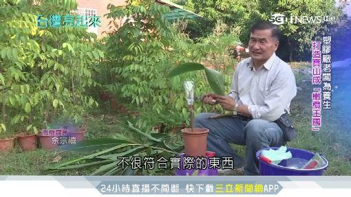 應酬搞壞腸胃 塑膠廠老闆為養生打造橄欖王國