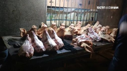 凌晨的剁肉聲...信義區夜半掛豬頭 嚇壞住戶