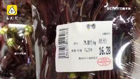 吃香椿炫富1800