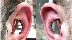 耳朵,身體改造,耳廓,聽力,耳洞(圖/翻攝自臉書)