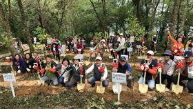 尋找當年種樹家庭 重返花蓮鯉魚潭林地護樹 中央社