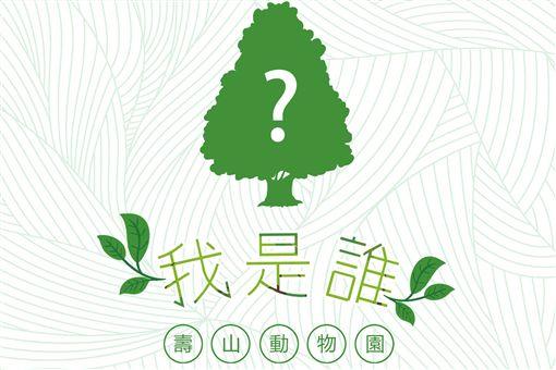 金城武,韓國瑜,造神,動物園,種樹,北韓