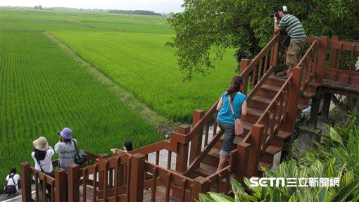 ▲春遊(圖/記者唐家興攝影)