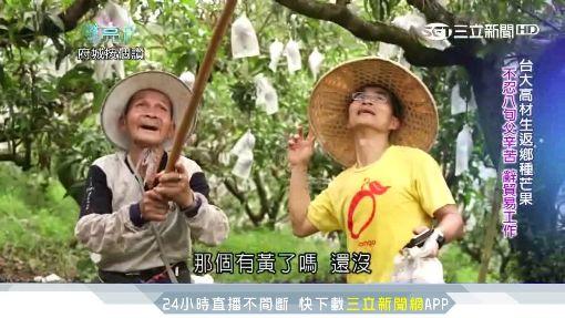 台灣亮起來5)