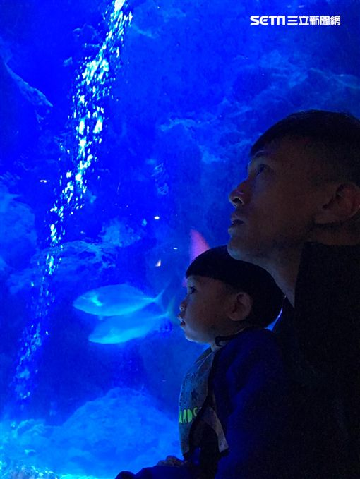 鍾承翰和老婆帶著兒子「翰寶」前往日本遊玩 圖/凱渥提供