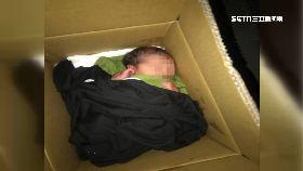 L紙箱棄女嬰0600(DL)