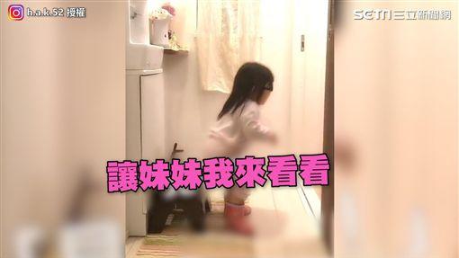 妹妹想直奔廁所看哥哥的「成果」。(圖/h.a.k.52 IG授權)