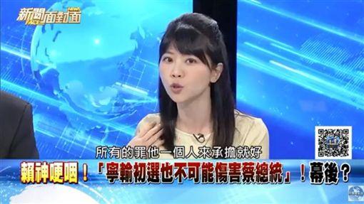 民進黨台北市議員高嘉瑜(圖/翻攝自新聞面對面YouTube)