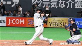 ▲中田翔再度擊出關鍵安打。(圖/記者王怡翔攝影)