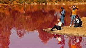 粉紅,澳洲,湖泊,墨爾本,遊客,刺激,β胡蘿蔔素,藻類,鹽 圖/翻攝自推特