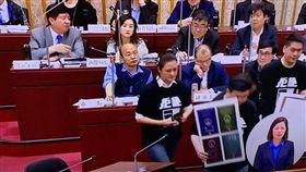 韓國瑜,備詢,議員,表情,坐姿,康裕成 圖/康裕成臉書