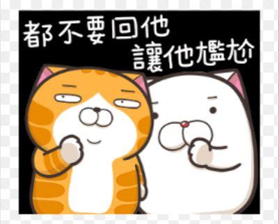 白爛貓貼圖。(圖/翻攝自網路)