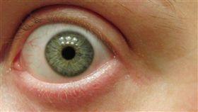 16:9 眼睛 眼球 瞳孔 圖/翻攝自pixabay https://pixabay.com/zh/photos/%E7%9C%BC-%E7%89%B9%E5%86%99-%E8%84%B8-%E8%93%9D%E8%89%B2-%E8%A7%86%E8%A7%89-535751/