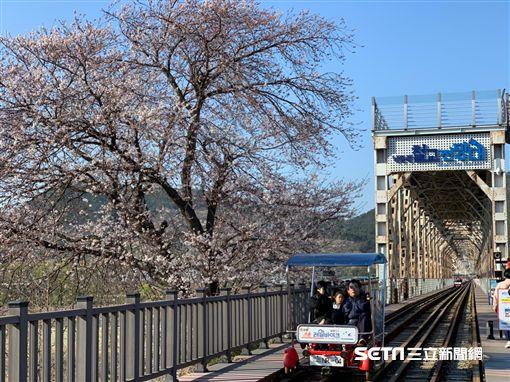 韓國,洛東江鐵道自行車公園,紅酒洞窟。(圖/記者馮珮汶攝)
