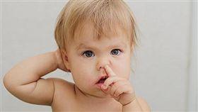 吃鼻屎增加免疫力?鼻孔愈挖愈大?力博宏醫師:很療癒 挖鼻屎,鼻子構造