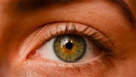眼睛 圖/翻攝自pixabay
