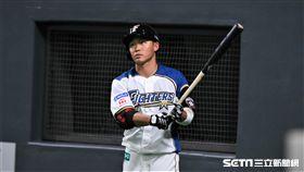 日本火腿「大王」王柏融。(資料照/記者王怡翔攝影)