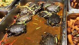 自助餐菜色是鱉 圖/翻攝自臉書「爆廢公社」