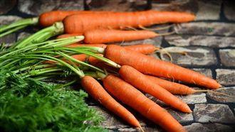 吃太多紅蘿蔔維生素A中毒?專家說…
