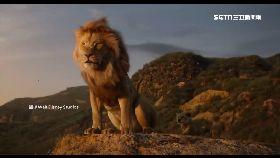 真人版獅王1600