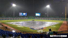 中華職棒新莊棒球場因雨延賽。(圖/記者王怡翔攝影)