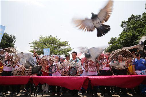 嘉義縣義竹鄉傳統民俗「賽鴿笭」活動,11日由出身義竹鄉的縣長翁章梁(中)開籠起飛,為一個月的鴿笭季揭開序幕。(嘉義縣政府提供)中央社記者江俊亮傳真 108年4月11日