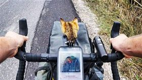 單車,壯遊,貓,喵星人,旅伴,蘇格蘭。翻攝自IG:1bike1world