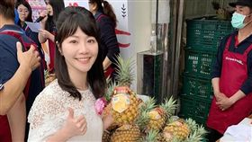 高嘉瑜,港湖,蛋捲冰淇淋,麥當勞,台北市議員 圖/翻攝高嘉瑜臉書