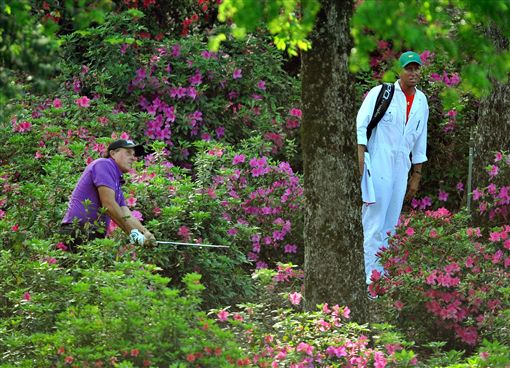 ▲第12洞果嶺後方花圃也不容易擊球。(圖/翻攝自Augusta.com)