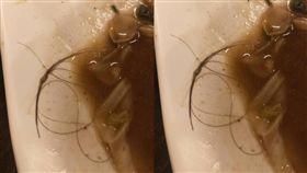 男子到餐廳吃飯無意間發現酸辣海鮮湯裡有一大撮頭髮(圖/爆料公社)