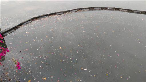 高雄市16日有一場大雨,市府開啟水閘門以利排水,但油污及垃圾隨之漂浮在愛河水域,環保局緊急拉起攔油索,防止污染擴大。(環保局提供)中央社記者王淑芬傳真 108年4月16日