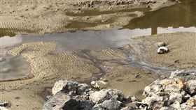 新竹,最毒海岸線,集塵灰,新豐海岸,環保局