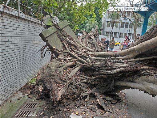 地震,花蓮,台北,大樓傾斜,餘震