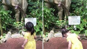 恐龍在鞠躬!小妹「10秒彎腰6次」回禮 日本遊客也融化 「爆廢公社」臉書