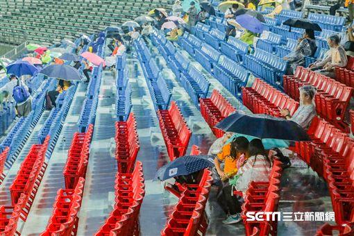 天母棒球場因雨延賽。(圖/記者林士傑攝影)