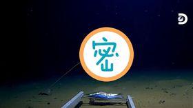 美國,海溝,水母,潛水,物種,海底,生物 https://www.youtube.com/watch?v=iHHXtNPd8vY