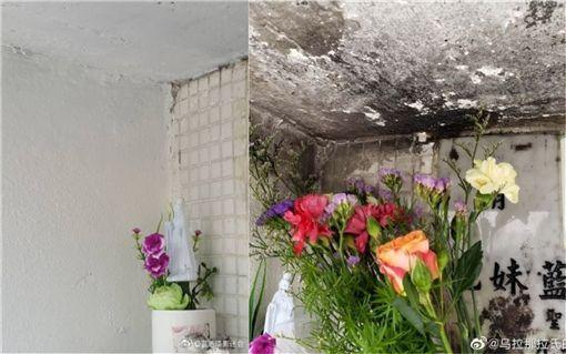 藍潔瑛墓碑已遭修復,但仍看得出煙燻火燒的痕跡。(合成圖/翻攝自微博)