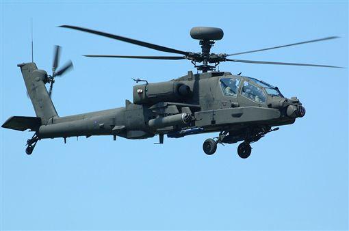 桃園,阿帕契,直升機,士官,露鳥