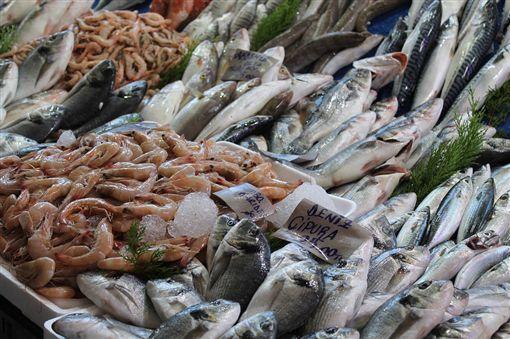 魚「這部位」千萬別吃!他誤信偏方 肝腎嚴重衰竭險死 (圖/取自Pixabay)