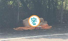 充氣娃娃丟墳墓旁…旁邊還有衛生紙,他怨:用完就丟?(圖/翻攝自爆廢公社)