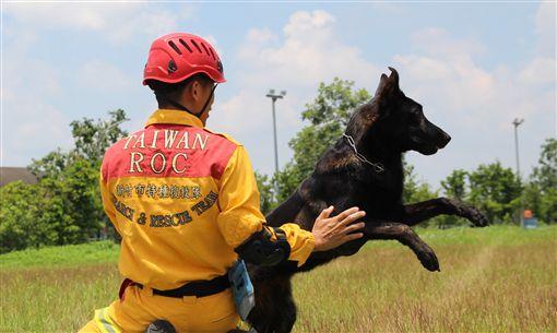 新竹市消防添新戰力 2隻搜救犬25日亮相新竹市消防局特種搜救隊107年派3名隊員前往內政部消防署訓練中心,與搜救犬一對一進行培訓,其中2隻通過初試的搜救犬,將於25日新竹市民安5號演習時亮相。(新竹市消防局提供)中央社記者魯鋼駿傳真 108年4月22日