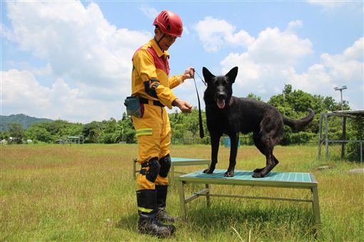新竹市消防添新戰力 2隻搜救犬25日亮相3名新竹市消防局特種搜救隊員107年前往內政部消防署訓練中心,與搜救犬進行為期2年的培訓,完成培訓後,3隻搜救犬將成新竹市消防局生力軍。(新竹市消防局提供)中央社記者魯鋼駿傳真 108年4月22日