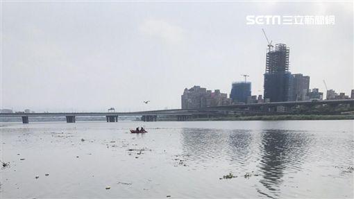 台北市大稻埕碼頭浮屍現場(讀者提供)