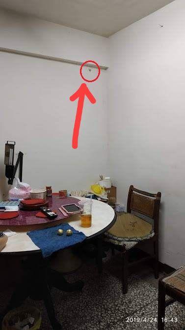 牆上一塊馬卡龍…狂冒22隻喇牙 網:母湯噴藥(圖/翻攝自爆怨公社)
