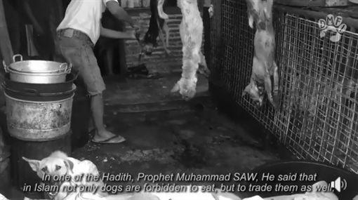 印尼屠宰場宰殺狗(圖/翻攝自Change For Animals Foundation臉書)