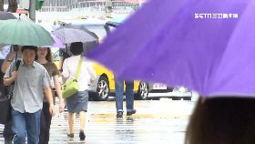 梅雨到轉春1200