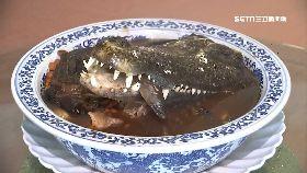 恐怖鱷魚宴1800