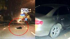 女友不願幫他「撿屍」,醉男倒在馬路正中央慘被車輾。(圖/翻攝自梨視頻)