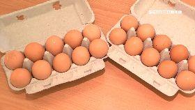 買蛋等半年1800